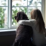 Little girl and her dog looking out the window. - replacement windows - jms exteriors
