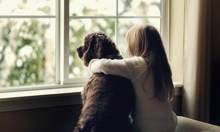 Replacement Window Girl and her dog jackston tn - replacement windows - jms exteriors
